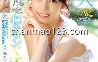 枫花恋(枫可怜)出道以来所有番号作品封面图片预览